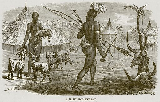 A Bari Homestead. Illustration for The Natural History of Man by JG Wood (George Routledge, 1868).