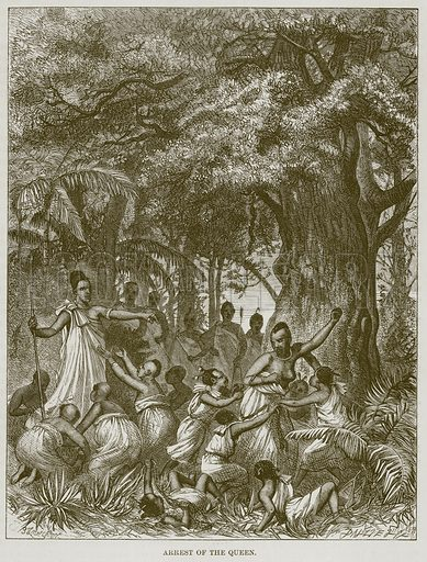Arrest of the Queen. Illustration for The Natural History of Man by JG Wood (George Routledge, 1868).
