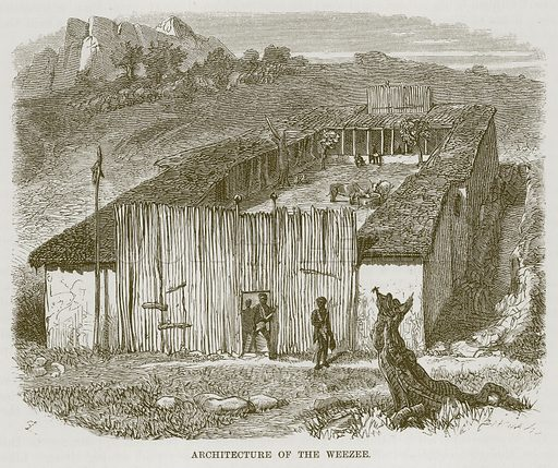 Architecture of the Weezee. Illustration for The Natural History of Man by JG Wood (George Routledge, 1868).