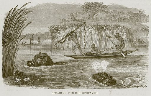 Spearing the Hippopotamus. Illustration for The Natural History of Man by JG Wood (George Routledge, 1868).