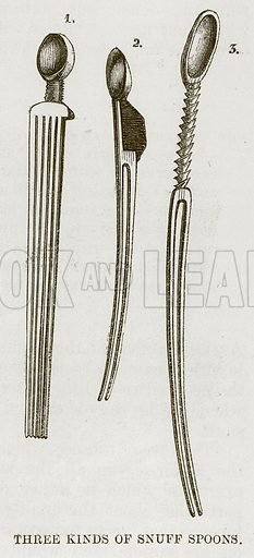 Three Kinds of Snuff Spoons. Illustration for The Natural History of Man by JG Wood (George Routledge, 1868).