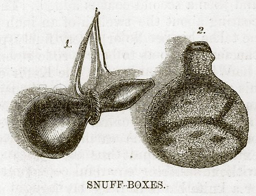 Snuff-Boxes. Illustration for The Natural History of Man by JG Wood (George Routledge, 1868).