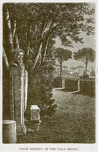 Viale Coperto, in the Villa Medici. Illustration for Rome by Francis Wey (Chapman and Hall, 1875).