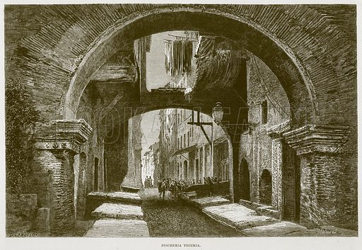 Pescheria Vecchia. Illustration for Rome by Francis Wey (Chapman and Hall, 1875).