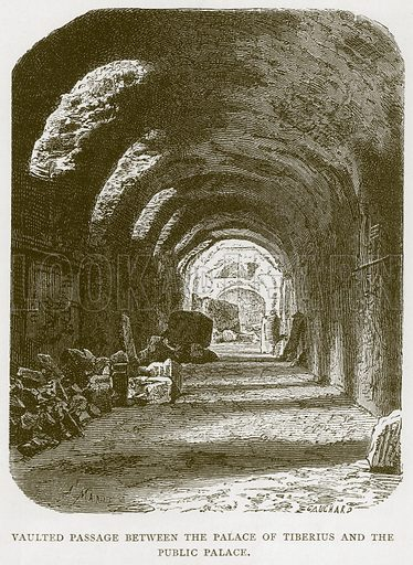 Vaulted Passage between the Palace of Tiberius and the Public Palace. Illustration for Rome by Francis Wey (Chapman and Hall, 1875).
