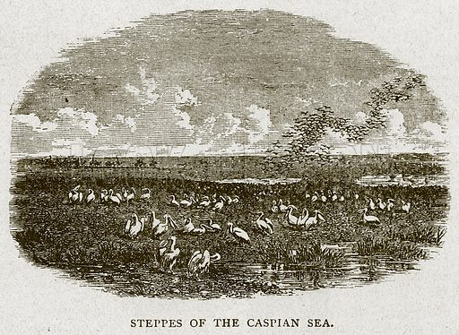 Steppes of the Caspian Sea. Illustration for Battles of the Nineteenth Century (Cassell, 1896).