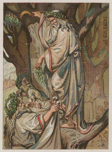 The Sacred Mistletoe