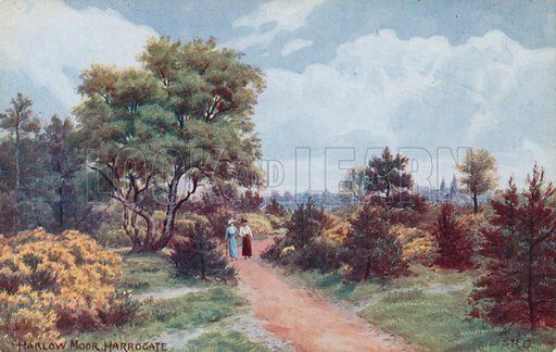 Harlow Moor, Harrogate.