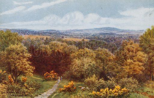 The Happy Valley, Tunbridge Wells.