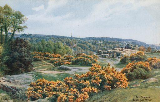 The Common, Tunbridge Wells.