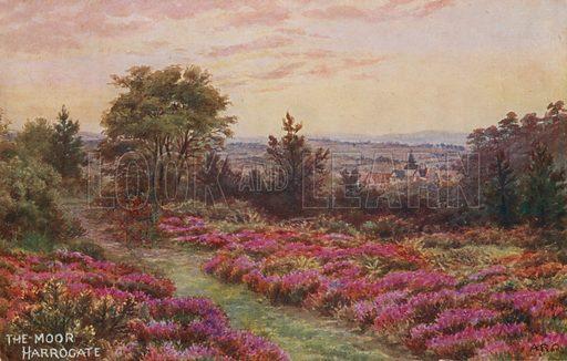 The Moor, Harrogate.