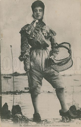 Oyster fisher