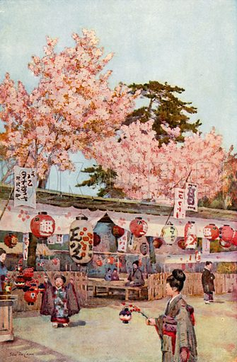 The Feast of the Cherry Blossoms