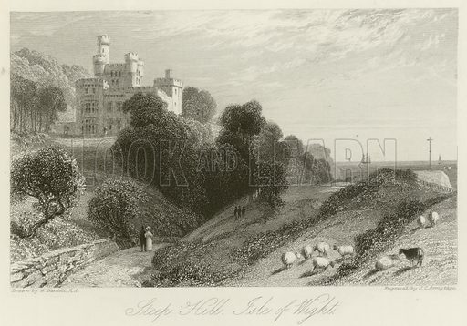 Steep Hill, Isle of Wight. Illustration for The Gallery of Engravings (circa 1880). Drawn by William Daniell, engraved by JC Armytage.