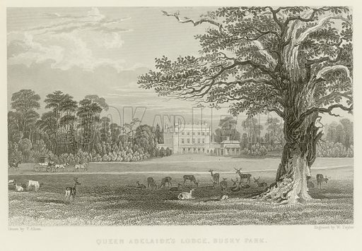 Queen Adelaide's Lodge, Bushy Park. Illustration for The Gallery of Engravings (circa 1880). Drawn by Thomas Allom, engraved by W. Taylor.
