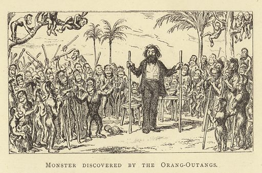 Monster discovered by the Orang-Outangs