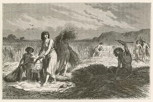 L'agriculture a l'epoque du fer. Illustration for L'Homme Primitif by Louis Figuier (Hachette, 1870).