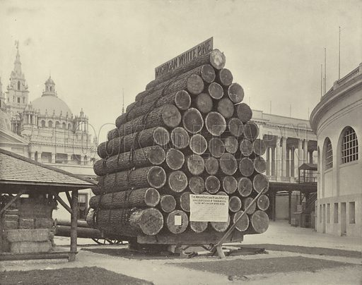The Fifty Saw-Logs. Illustration for The Dream City, A Portfolio of Photographic Views of The World's Columbian Exposition (ND Thompson, 1893).