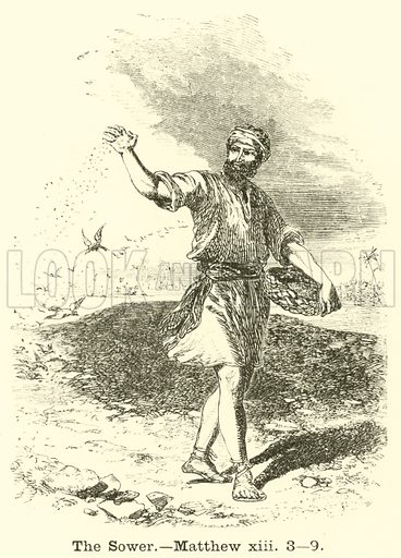 The Sower, Matthew, xiii, 3, 9. Illustration for The Picture Scrap Book (Religious Tract Society, c 1880).