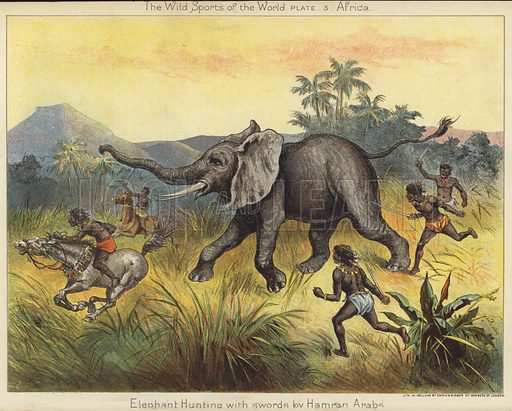 Elephant hunting with swords by Hamran Arabs