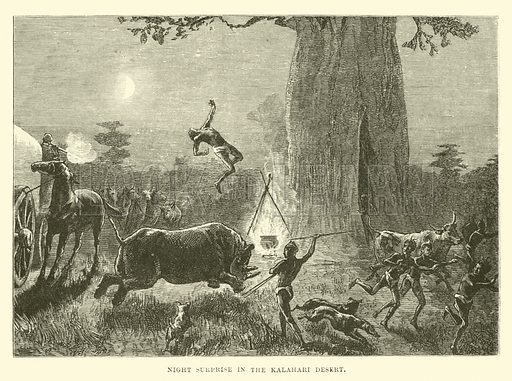 Night surprise in the Kalahari Desert. Illustration for The World Its Cities and Peoples by Robert Brown (Cassell, c 1885).