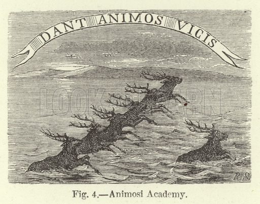 Animosi Academy. Illustration for Historic Devices, Badges and War-Cries by Mrs Bury Palliser (Sampson Low, 1870).