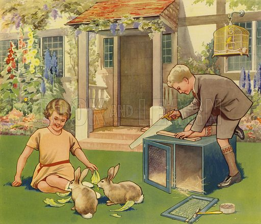 Boy making rabbit hutch