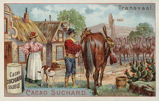 Ostrich farm, Transvaal. Educational card, late 19th or early 20th century.