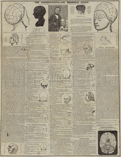 The Phrenological and Mesmeric Chart.