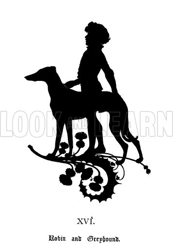 Robin and Greyhound