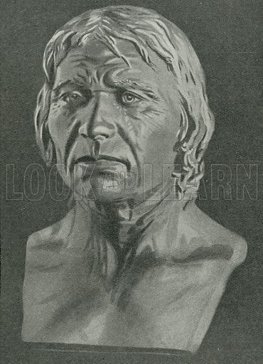 Bust of a Cro-Magnon man - Look and Learn History Picture