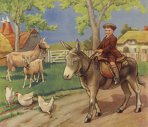 Boy riding a donkey in the English countryside
