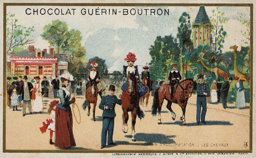 Horses, Jardin d'Acclimation, Paris. French educational card, late 19th/early 20th century.