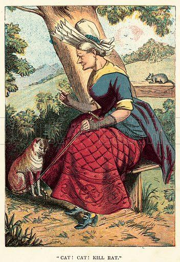Cat! cat! kill rat. Illustration for Aunt Friendly's Nursery Keepsake (Frederick Warne, c 1885).