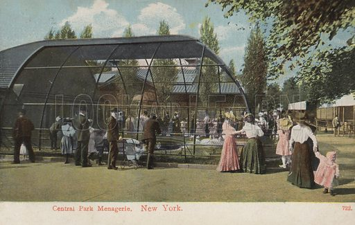 Central Park Menagerie, New York