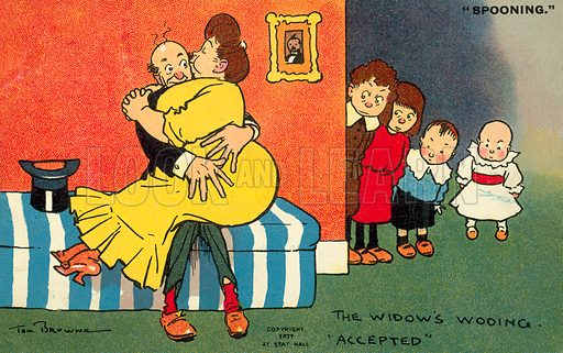 The Widow's wooing accepted