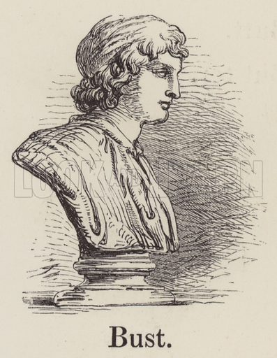 Bust. Illustration for An Illustrated Vocabulary For The Use Of The Deaf And Dumb (SPCK, 1857).