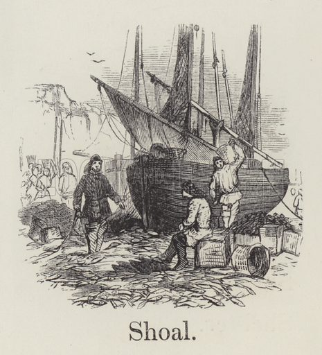 Shoal. Illustration for An Illustrated Vocabulary For The Use Of The Deaf And Dumb (SPCK, 1857).