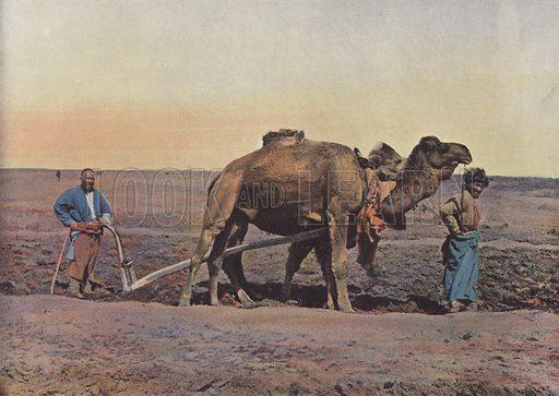Laboureur Tekes. Illustration for Autour Du Monde (L Boulanger, c 1900).