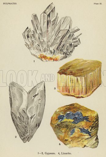 Sulphates, gypsum, linarite. Illustration for The World's Minerals by Leonard J Spencer (W & R Chambers, 1911). Fine printing.