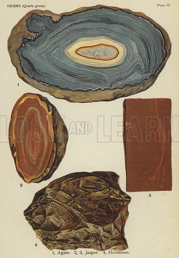 Oxides (quartz group), agate, jasper, hornstone. Illustration for The World's Minerals by Leonard J Spencer (W & R Chambers, 1911). Fine printing.
