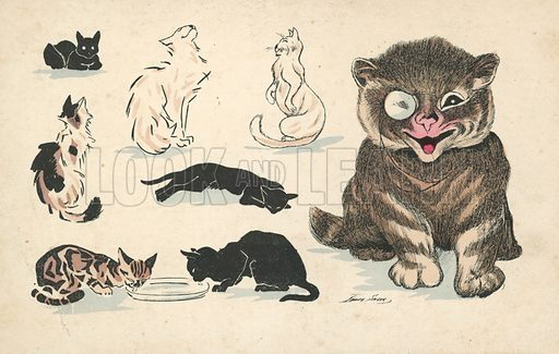 Fat cat, wearing monocle, alongside various less favoured pussies. Postcard, early 20th century.