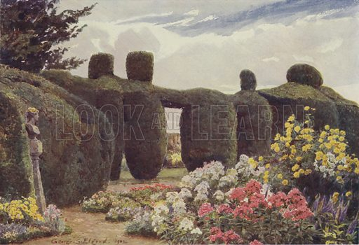 The Yew Hedge, Campsey Ashe