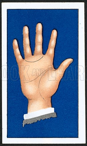 Ring of Venus. This is a half circle formed by a line starting from between the first and second fingers, crossing or surrounding the Mounts of Saturn and Apollo, and, when perfect, ending between the third and fourth fingers. Illustration for one of set of cigarette cards on Palmistry, published by Carreras Ltd, early 20th century.