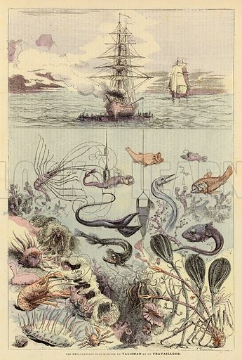 Les Explorations Sous-Marines Du Talisman Et Du Travailleur. Illustration for Journal Des Voyages, 3 May 1885.  Note: Image has been digitally cleaned to remove age staining.
