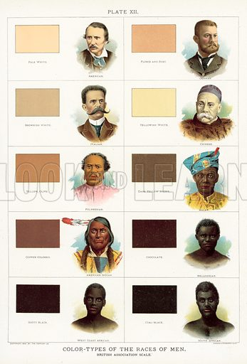 Colour-Types of the Races of Men, British Association scale