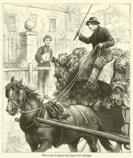 Miles's cart on market-day heaped with cabbages. Illustration for Chatterbox (1890).