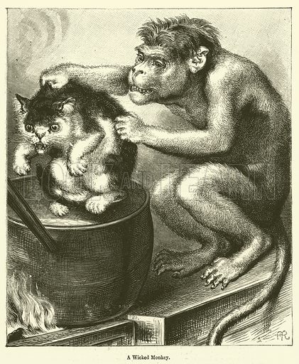 A Wicked Monkey
