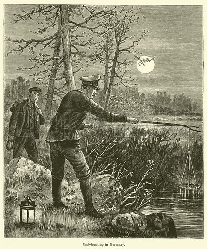 Crab-hunting in Germany. Illustration for Chatterbox (1903).