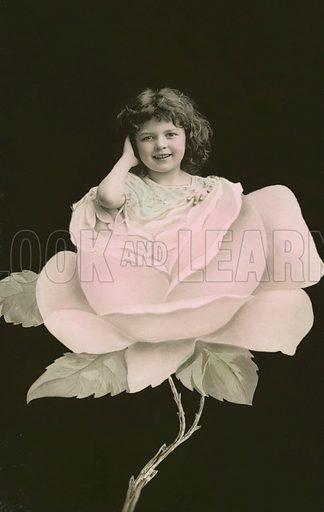 Girl in a rose